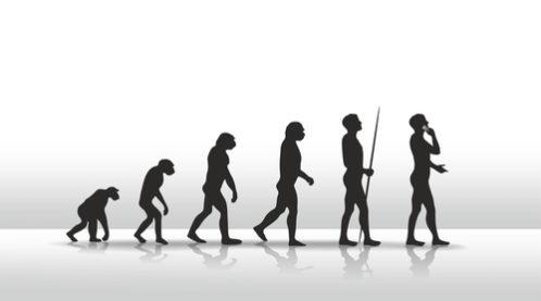 人間の進化の謎や過程を解き明か...